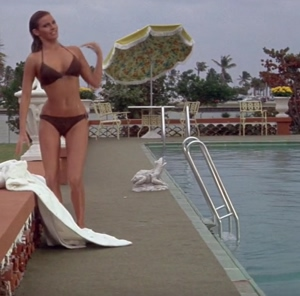 Raquel Welch - Lady in Cement