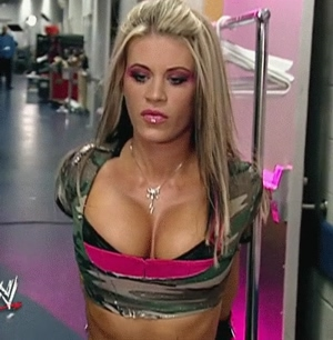Ashley Massaro's wonderful tits